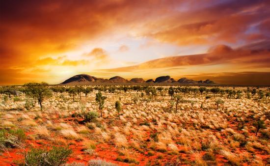 Exploring Australia including the Barossa Valley Wine Region