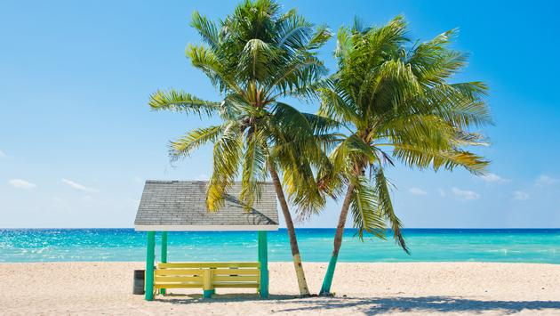 Caribbean beach with palm trees, Grand Cayman, Cayman Islands. (Photo via IreneCorti / iStock / Getty Images Plus)