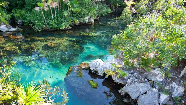 Cenote with beautiful turquoise water for snorkeling at Xel-Ha, Cancun. (Jonah_Photos / iStock / Getty Images Plus)