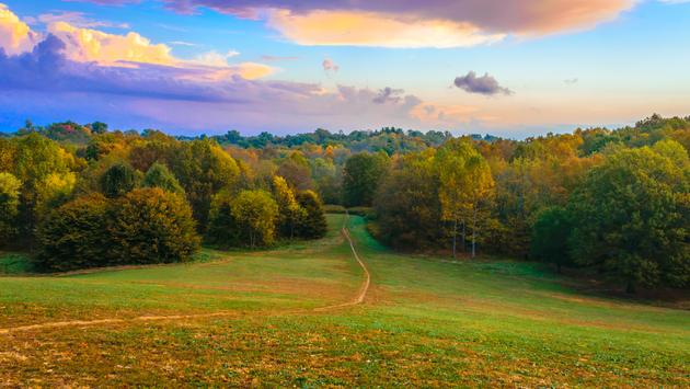 Trail through Dog Hill at Cherokee Park in Louisville KY. Cherokee Park is a Frederick Law Olmsted designed park. (Photo via Thomas Kelley / iStock / Getty Images Plus)