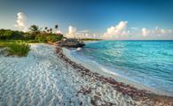 Idyllic beach of Caribbean Sea in Riviera Maya Beach (Photo via Mustang_79 / iStock / Getty Images Plus)