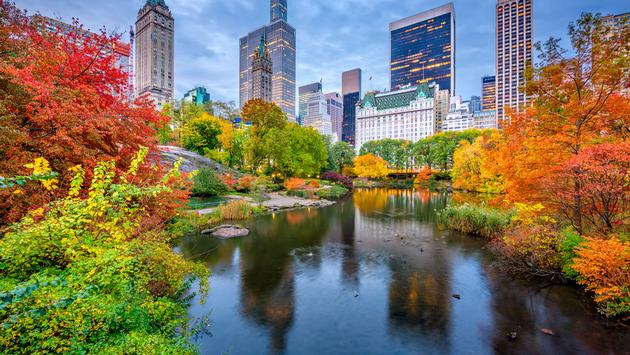 Central Park during autumn in New york City. (Sean Pavone / iStock / Getty Images Plus)