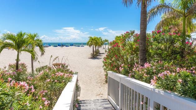 Boardwalk on beach in St. Pete, Florida, USA (photo via mariakraynova / iStock / Getty Images Plus)