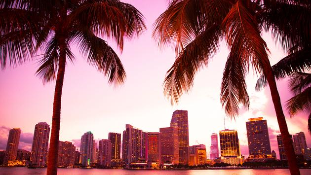 Miami Florida skyline and bay at sunset seen through palm trees (photo via littleny / iStock / Getty Images Plus)
