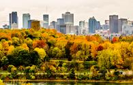 Montreal downtown skyscrapers in autumn (jbd30 / iStock / Getty Images Plus)