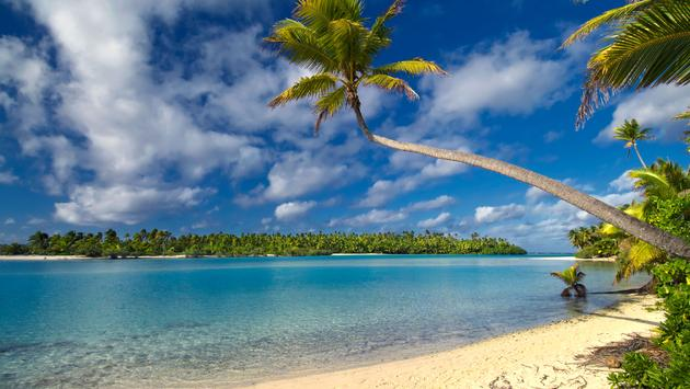 Palm tree over lagoon on One Foot Island, Aitutaki,The Cook Islands (photo via 7Michael/iStock/Getty Images Plus)
