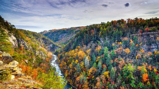 Tallulah Gorge in Georgia, USA (photo via SeanPavonePhoto/iStock/Getty Images Plus)