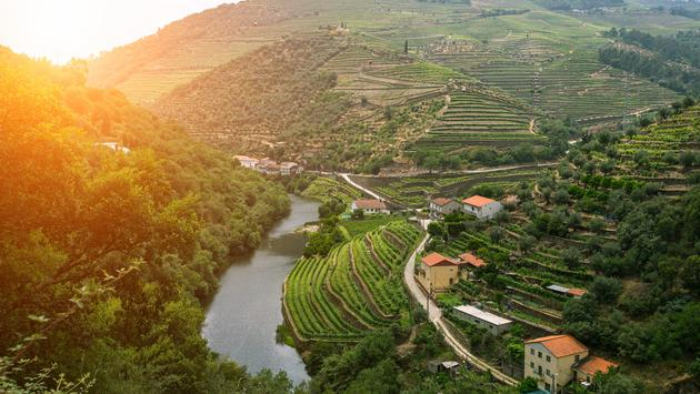 Northern Portugal & Spain featuring the Douro River Valley